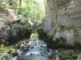 Gorges du Taubenloch 2011