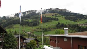 Lenk 2009